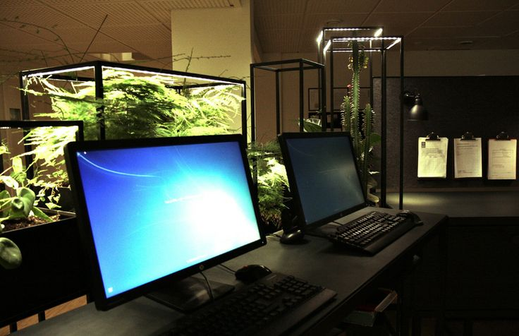 Standing workstations with greenery screens