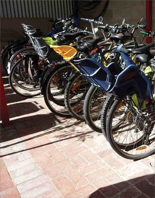 A number of bicycles parked in a common area; many with child seats.