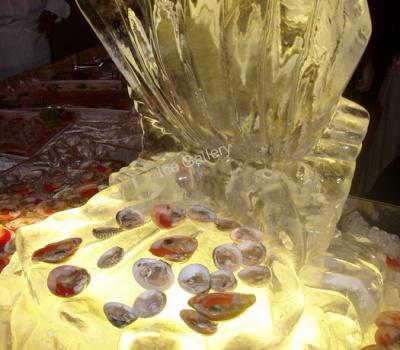 Ένα πανέμορφο όστρακο από πάγο, ύψους 50εκ. για εντυπωσιακό σερβίρισμα οστρακοειδών.