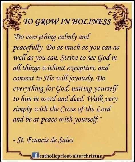 St. Francis                                                       …