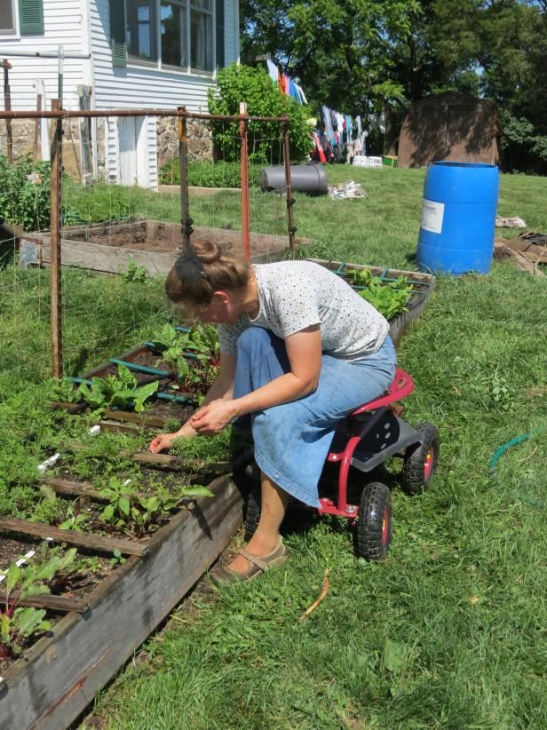 25 best Accessible Gardening images on Pinterest | Raised beds ...