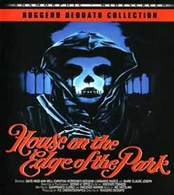 The House on the Edge of the Park (1980) Film Review The House on the Edge of the Park is a 1980 Italian produced exploitation slasher horror film directed by Ruggero Deodato. It stars David Hess from Wes Craven's The Last House on the Left and Giovanni Lombardo Radice. The House on the Edge of the Park 1980 Film Trailer https://www.youtube.com/watch?v=WF4iLgjAZE4