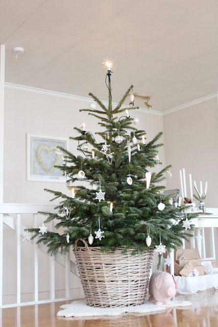 Christmas tree: little one for the porch or hallway. I love that it's in a basket!: