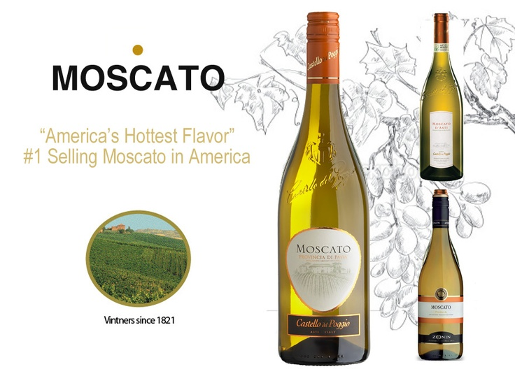 Best 25 olive garden moscato ideas on pinterest mascoto drinks moscato sangria and green for Green apple sangria olive garden recipe