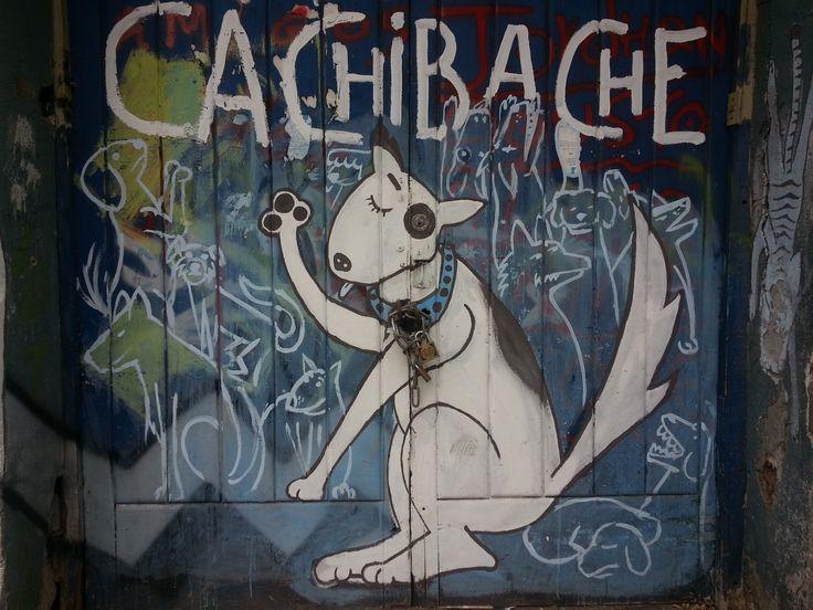 brigada cachibache, barrio yungay