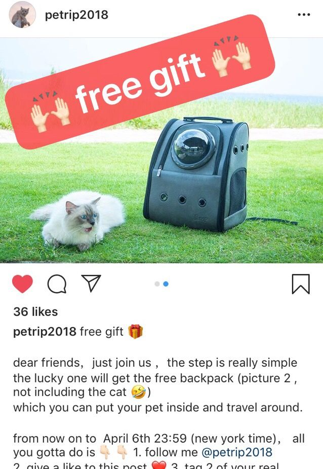 The Winner Comes Out And Get The Free Gift Pet Backpack Pets Your Pet
