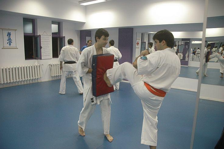 Karate Kyokushin Sibiu - Antrenament la palmare si perne - Tehnica de picior, Mae Geri Chudan