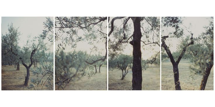 JoAnn Verburg Photography