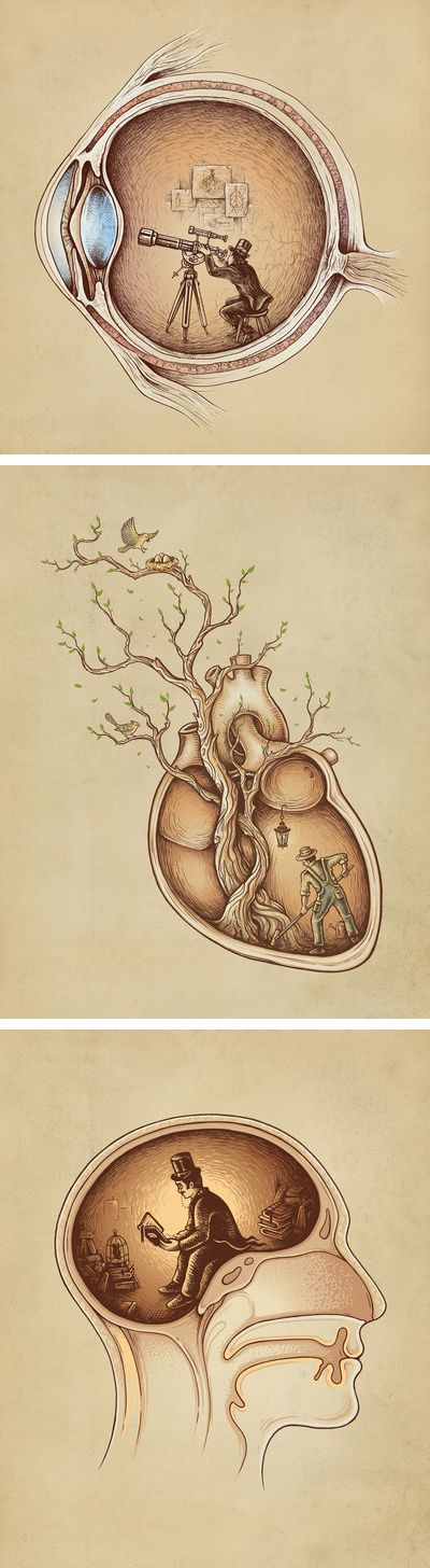 Extraordinary Observer, Tree of Life, and Mind Reader, by Emkel Dikia. - these would look cool in a doctor's office or something