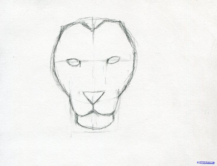 how to sketch a lion step 6