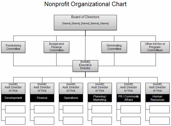 Sample Nonprofit Organizational Chart