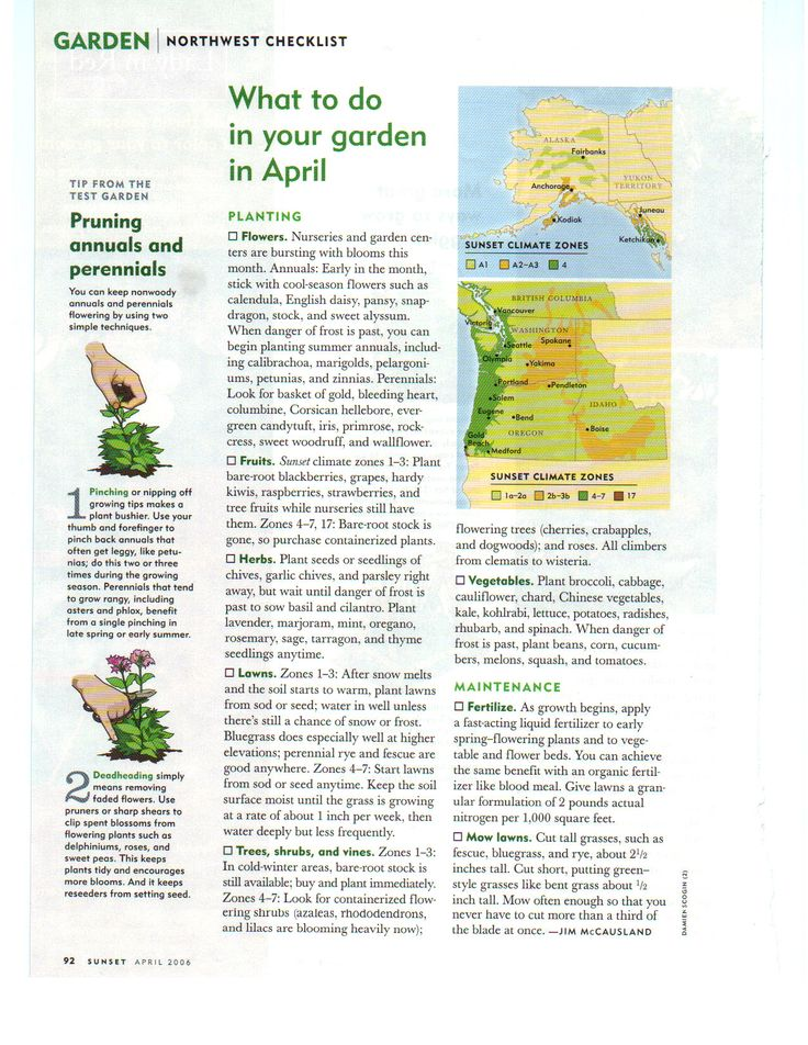1000 images about garden checklist april on pinterest for Gardening jobs for april