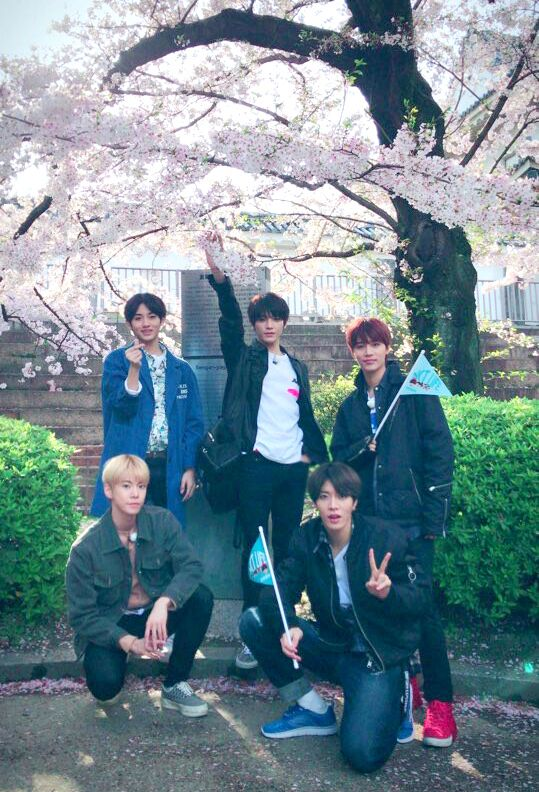 <NCT LIFE in Osaka>  띵동 NCT 남친짤이 도착했습니다 사랑할 수 밖에 없는 NCT가  오사카에서 남친미