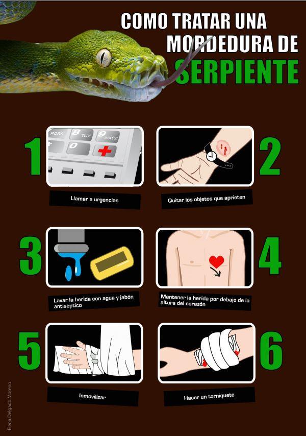 Cómo tratar una mordedura de serpiente