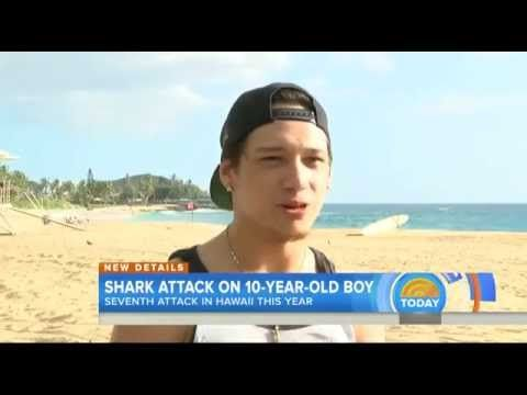 Shark attack injures 10-year-old boy in Hawaii amid spike in Oahu attacks
