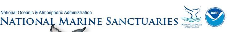 National Marine Sanctuaries: Education: For Teachers