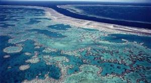 Según un nuevo estudio publicado en PNAS la pérdida de coral la Gran Barrera de coral australiana (GBC) se ha debido a daños por las tormentas (un 48%), la acción de la estrella de mar corona de espinas (un 42%) y al blanqueamiento. Estas causas han reducido el coral a la mitad en los últimos 27 años. + info: http://www.ecoapuntes.com.ar/2012/10/la-gran-barrera-ha-perdido-la-mitad-de-su-coral/