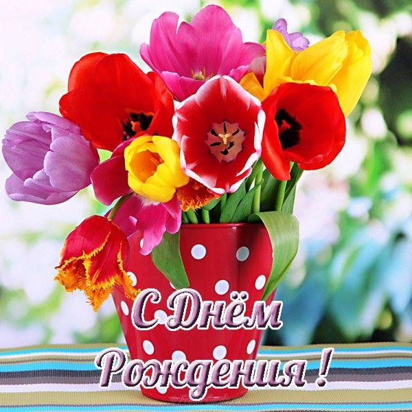 pozdravlenie-s-dnem-rozhdeniya-molodoj-otkritki foto 11