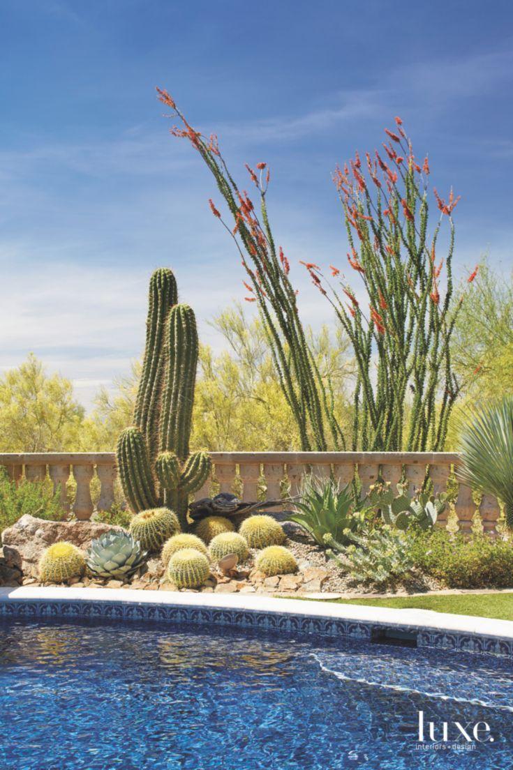 Tall And Local Cactus Pool Vignette With Blue Skies Minimalist Decor Minimalist Home Decor Arizona Decor