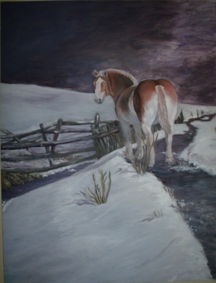 Horse in the cold