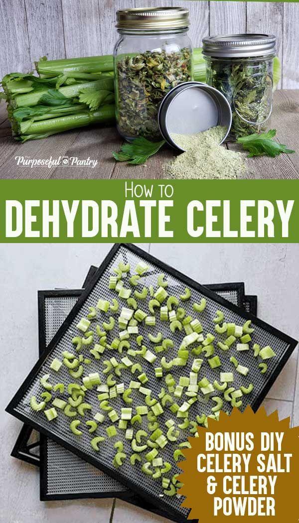 How To Dehydrate Celery Celery Salt Dehydrated Vegetables Dehydrator Recipes Dehydrator