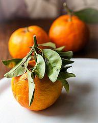 In attesa della marmellata. E dell'inizio della produzione. La più buona marmellata che abbia mai fatto: ottima anche se fatta con arance normali.