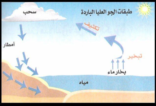 فعالية في دورة المياه في الطبيعة مدرسة السلام الابتدائية سخنين Projects To Try Poster Projects
