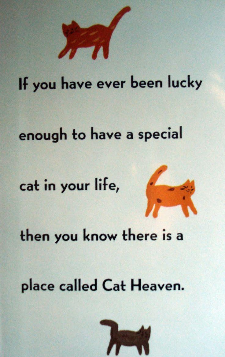 139 best ideas for kitty memorial garden images on pinterest cat