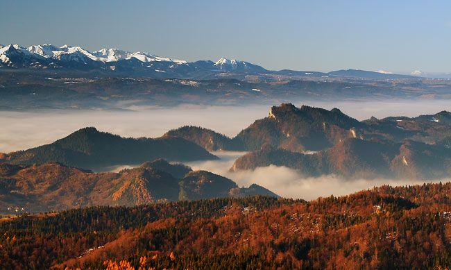 Beskid Sądecki, Pieniny, Magura Spiska i Tatry - wszystkie te pasma objęte obiektywem rodowitego sądeczanina, K. Bańkowskiego. |  Beskid Sądecki,Pieniny Mountains, the Tatras and Spiska Magura - all these mountain ranges encompassed in one photo by a native, K. Bańkowski.  #mountains #beskidy #tatry