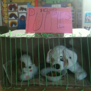 Puppies for sale in our classroom that we turned into a pet store!