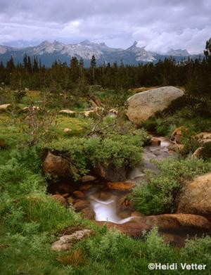 Yosemite Grand Traverse w/ Southern Yosemite Mountain Guides