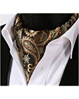 SetSense Men's Paisley Jacquard Woven Self Cravat Tie Ascot