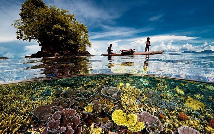 Intervista a David Doubilet, pioniere della fotografia subacquea