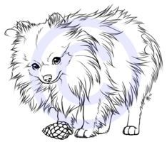 mini the pomeranian tattoo design by henu