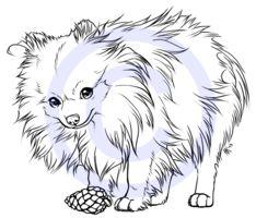 Mini the Pomeranian -tattoo design- by henu