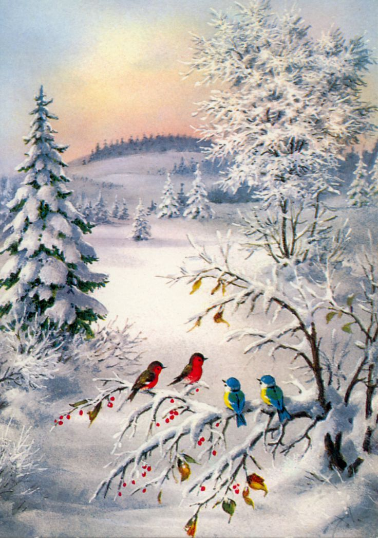 Галерея зимних открыток, картинки борьбы открытка