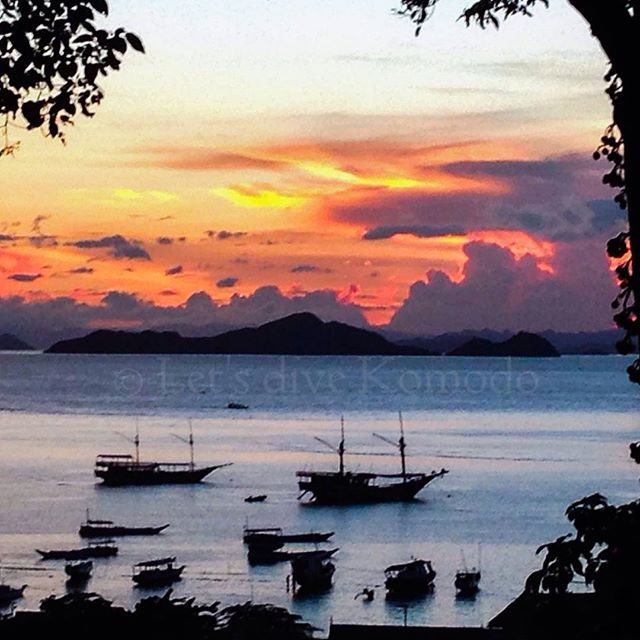 Have a great evening! #indonesia #flores #komodo #labuanbajo #backyard #view #sunset #beautiful #colors #ocean #port #boats #happy #time #favorite #lovemyjob #lovemylife #photography #photooftheday #scubadiving #divecenter #instapic #instadaily #beautifulindonesia