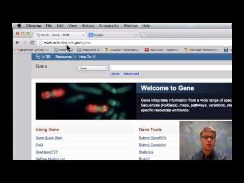 Comparing DNA Sequences - YouTube