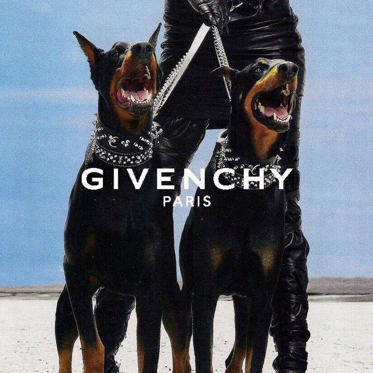 Givenchy Dog, Aesthetic Pastel