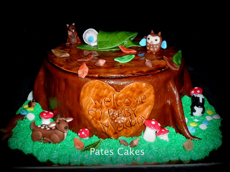 Forest Themed Baby Shower Cake For A Boy!