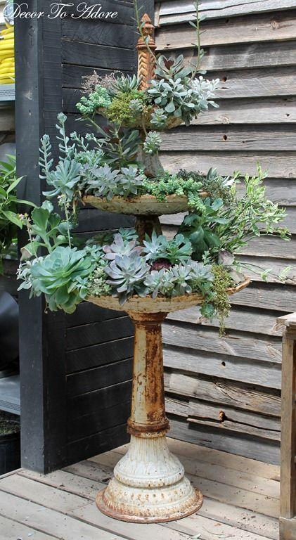 Terrain Succulent Planter