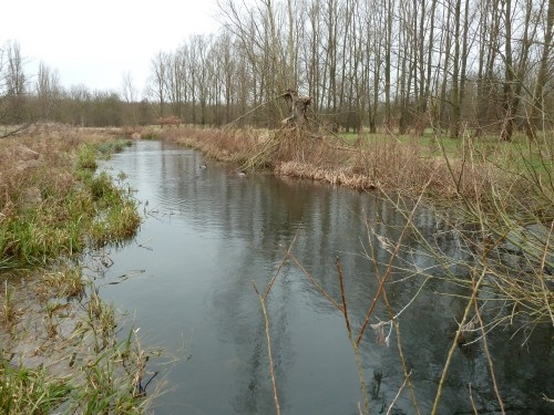 Waltham Abbey to Epping Walking Route Meadows http://www.walksandwalking.com/epping-forest/