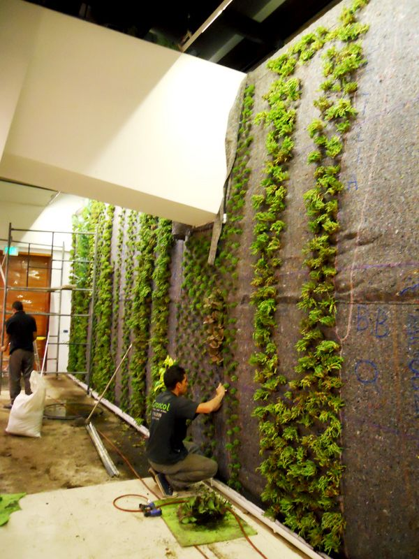 Jardines verticales plantas Ignacio Solano Hotel Cosmos 100