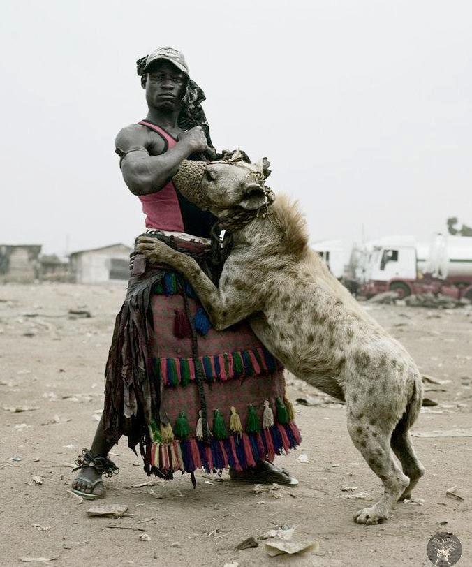Este si es un negro berraco... con una hiena de mascota yaaiiigh