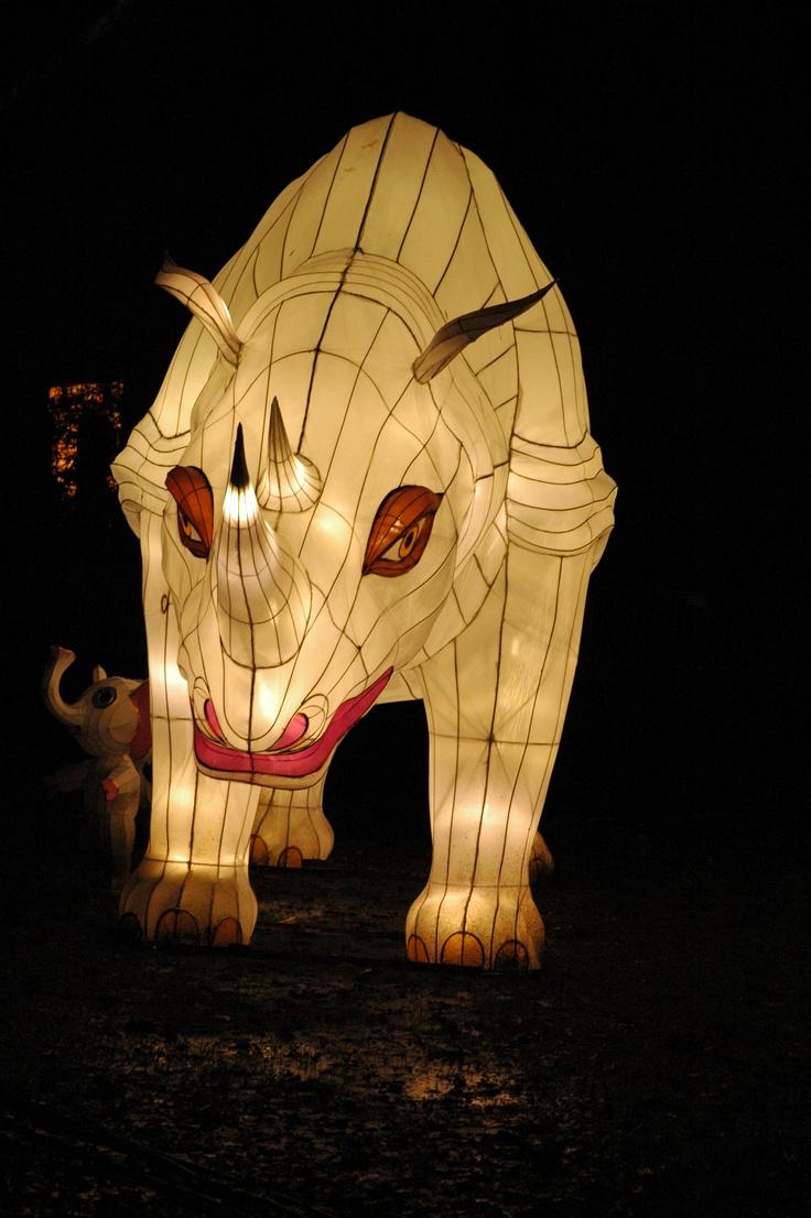 neushoorn bij de euromast, china light rotterdam