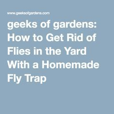 1000 ideas about homemade fly traps on pinterest fly
