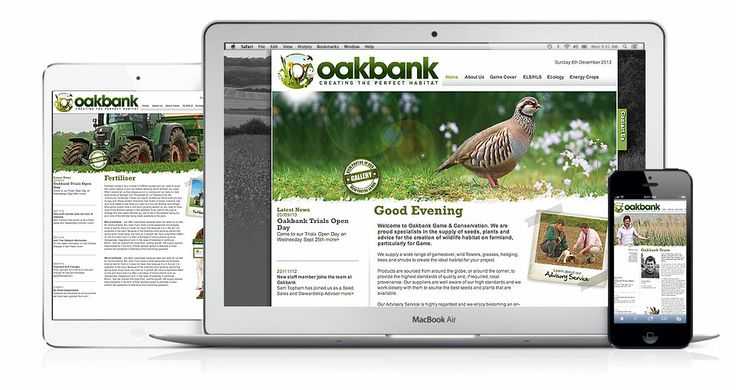 Oakbank began in 2004 and have since become one the leading providers of plants, seeds and advice for the wildlife habitat – obtaining the Royal Warrant no less. iD designed a new brand for Oakbank, encapsulating their ethos which is to 'Create the Perfect Habitat'. Check out their website and be sure to look out for their chocolate springer spaniel 'Twix'.