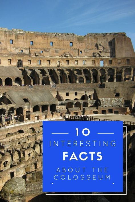 Some fun facts you might not know about the Colosseum and some practical advice for visiting when in Rome, Italy