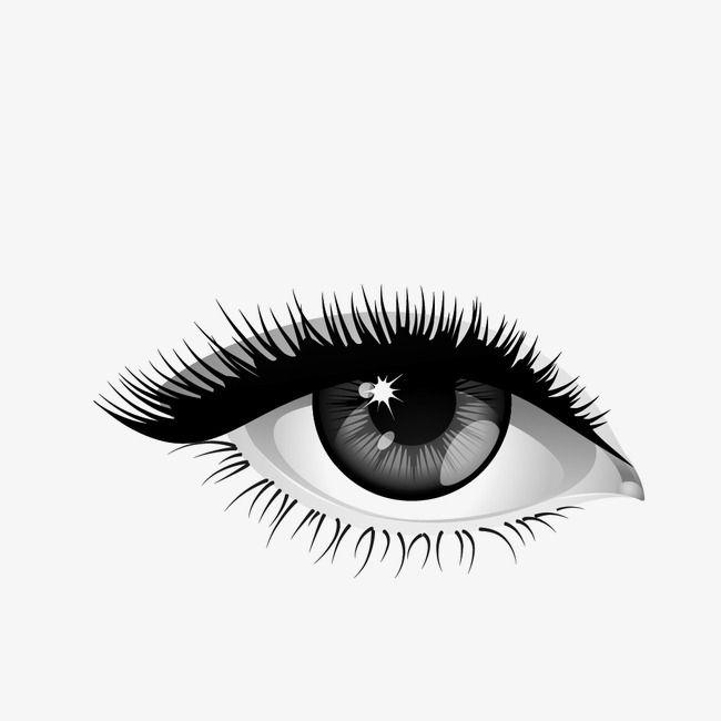 Eye Eyelash Us Pupil Png Transparent Clipart Image And Psd File