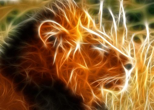 Fractals in Nature Animals   Tag : animal fractal wallpaper collections, lion fractal, wolf fractal ...